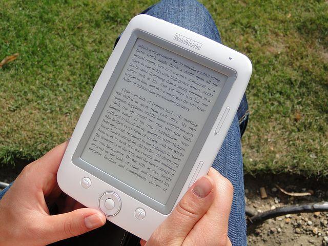 e-book Een vloek of een zegen